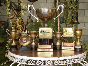 Always first prize winning garden's cups & certificates, won over the years. Awardee of Lai Chand Stokes Running Trophy, we have donated Sardar Santokh Singh Running Cup for the best succulent.