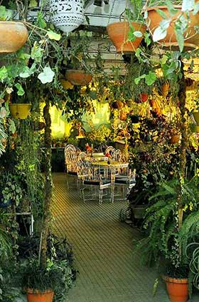 Brightland Hotel - Terrace Garden