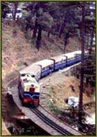 Shimla Kalka Train